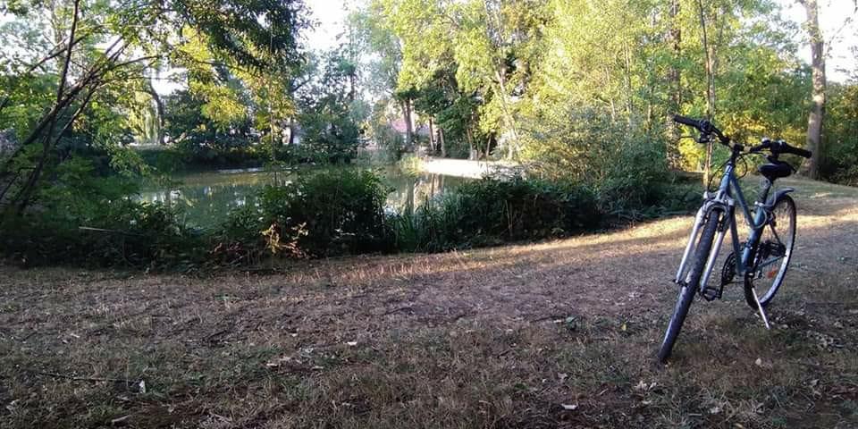 Photo de l'étang proche du château du Bost à Bellerive-sur Allier (03700)